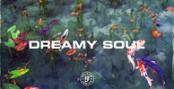 Dreamy soul   1000x512 web
