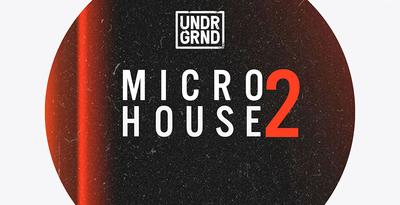 Micro House 2 1000X512 Web