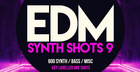 EDM Synth Shots 9