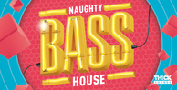 Thicksounds naughtybasshouse 1000x512px