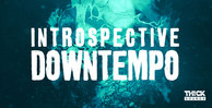 Thicksounds introspectivedowntempo 512 web