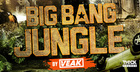 Big Bang Jungle by Veak