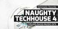 Delectable records naughty techhouse 04 512web