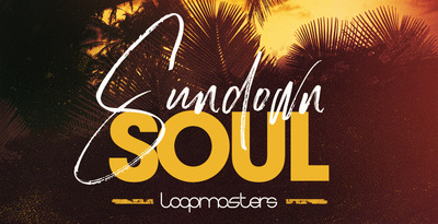 Royalty free soul samples  acoustic guitars and grooving basslines  live soul drum loops  percussion and keys loops  electric guitar sounds rectangle