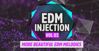 EDM Injection Vol 2
