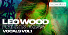 Leo Wood - Drum & Bass Vocals Vol. 1