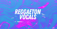Reggaeton vocals rectangleweb