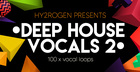 Hy2rogen – Deep House Vocals 2