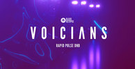 Black octopus sound   voicians   rapid pulse dnb   artwork 1000x512web