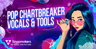 Pop Chartbreaker Vocals & Tools