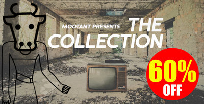 The collection 1000x512web