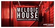 Melodic house vol 1 loopmasters