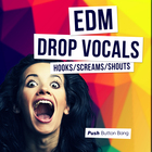 53 edm drop vocals 1000x1000