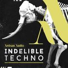 Indelible techno samples  dub chords and techno top loops  percussion   bass