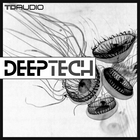 2 deeptech  bassloops  techno drum loops drumshots deep techno tech house top loops synth loops 1000 x 1000