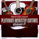 Platinum acoustic guitars 2  pop guitar samples  acoustic guitar loops