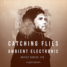 Catching flies   ambient electronic  royalty free hip hop samples  foley sounds and fx  downtempo drum loops  warm basslines  atmpospheres and pads