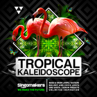Singomakers tropical kaleidoscope bass drum loops guitars melody voice loops one shots serum presets unlimited inspiration 1000 1000