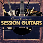Session guitars  royalty free guitar samples  bass guitars  acoustic and electric guitar loops