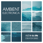 Niche creator series ambient electronica 1000 x 1000