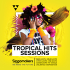 Singomakers tropical hits sessions bass loops drum loops synth loops one shots guitar loops fx vocals unlimited inspiration 1000 1000