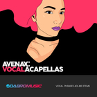 Dabro music avenax vocal acapellas 1000 1000