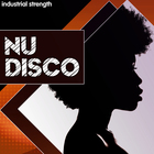 2 nu disco kits bass drums kicks hats snares drum tracks stems midi strings percusion disco house 1000 x 1000