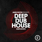 James dexter samplestate samples loops deep house 1000