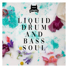 Liquid drum and bass soul sounds royalty free 1000 web