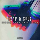 Trap   soul 1000 hip hop loops