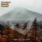 Ambient melodic house samplestar 512 house loops