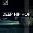 2 deep hip hop east coast west coast modern hip hop drums bass ambience fx beats drum shots kicks heavy bass  depp vibes 1000 web