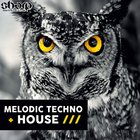 Sharp   melodic techno   house web