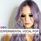 Experimental vocal pop samples loops royalty free future chill trap 1000