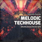 Melodic techhouse 1000 samples loops web