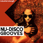 2 nu disco grooves bass drums strings percussion loop kits construction kits top loops midi  1000 web