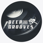 Deep grooves undrgrnd sounds samples loopcloud ready 1000 web