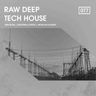 Raw deep tech house