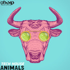 Sharp   tech house animals samples royalty free 1000 web