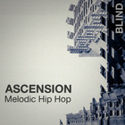 Blind ascension melodic hip hop samples loops 1000 web