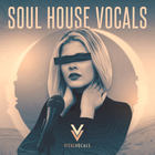 Royalty free vocal samples  house vocals  female lead loops  vocal adlibs  soul house chorus and backing vocals