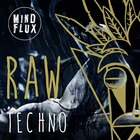 Raw techno mind flux1000web.jpg