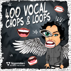 Singomakers 400 vocal chops   loops 1000 web