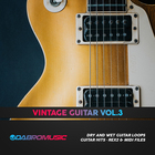 Dabromusic vintage guitar vol3 1000 1000 web