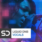 Liquid drum   bass vocals