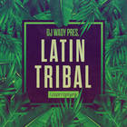 Royalty free tribal house samples  tech house basslines  laitin instrument loops  salsa piano  latin percussion and brass loops