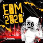 Singomakers edm 2020 1000 1000 web