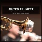 Muted trumpet 1 cover