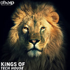 Kings of tech house 1000 web