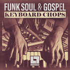 Looptone funk soul   gospel keyboard chops 1000 web